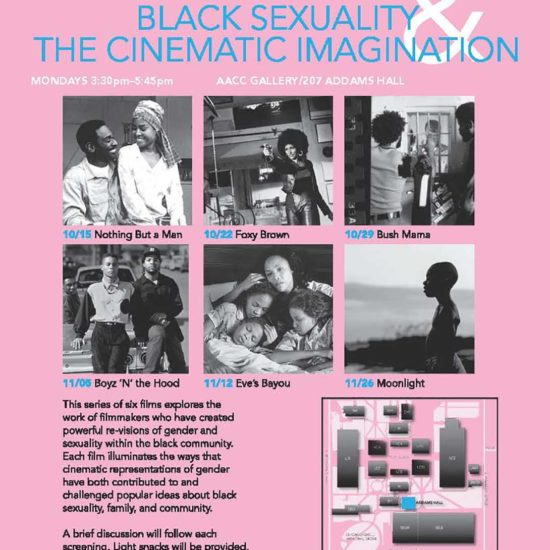 Black Sexuality & the Cinematic Imagination